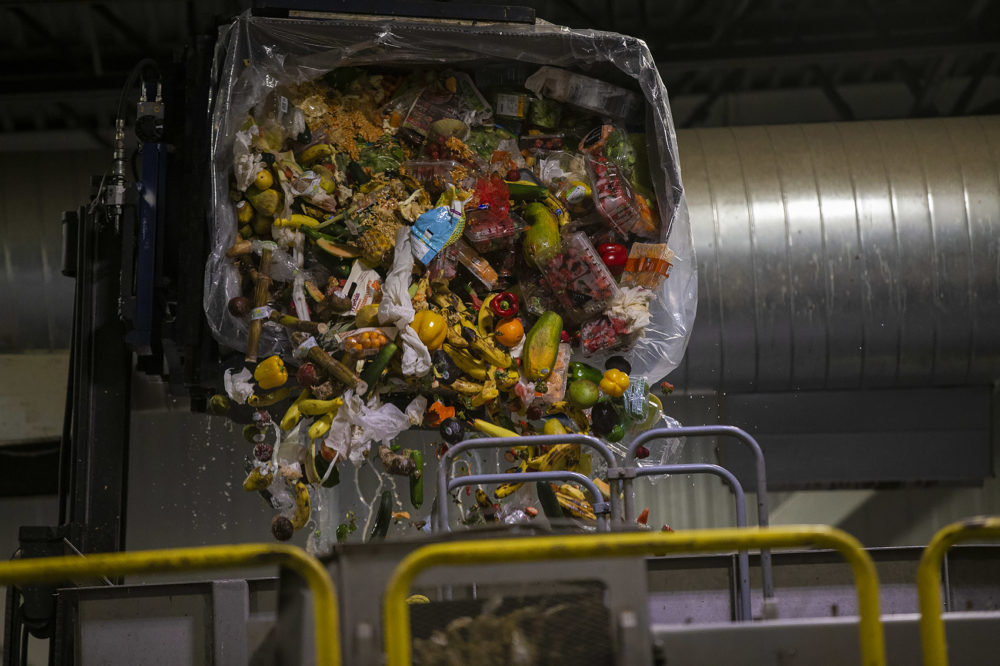 A bin of discarded food from a Stop & Shop store being dumped into a machine that processes the food and feeds it into an anaerobic digester at the Stop & Shop Distribution Center in Freetown (Jesse Costa/WBUR)