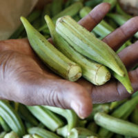 A customer checks the firmness of fresh okra at Doris Berry Produce stand in Jackson, Miss. (Rogelio V. Solis/AP)
