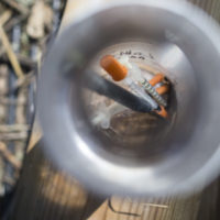 In this Thursday, Sept. 17, 2015, photo, used heroin syringes are stored in a water bottle as Steve Monnin cleans a wooded area in Combs Park, in Hamilton, Ohio.  (John Minchillo/AP)