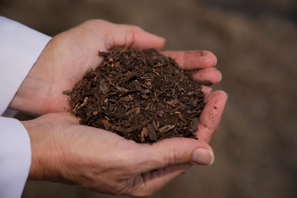 Finished material from human composting. (Courtesy Washington State University)