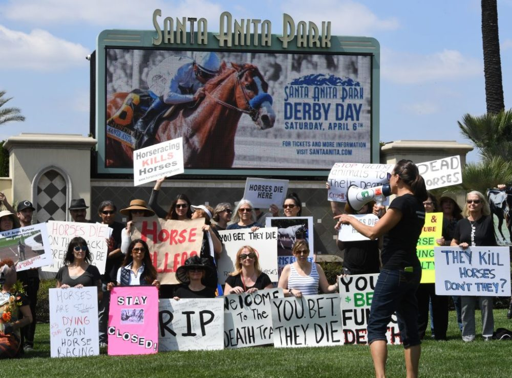 Animal rights advocates protest beside the Santa Anita entrance gate. 23 racehorses died in the first three months of racing season at Santa Anita. (Mark Ralston/AFP/Getty Images)