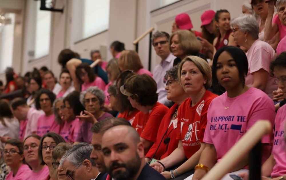 Backers and critics of the so-called ROE Act, which would legalize abortions after 24 weeks under certain circumstances, sat next to each other wearing color-coded shirts in the Gardner Auditorium on Monday as a public hearing on the bill got underway. (Sam Doran/SHNS)