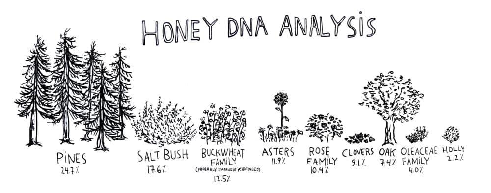 (Courtesy Jessica Yurkofsky, of Harvard's metaLAB)