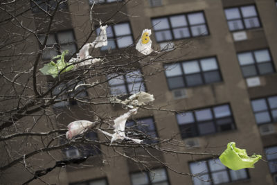 Plastic bags are tangled in the branches of a tree in New York City's East Village neighborhood. (Mary Altaffer/AP)