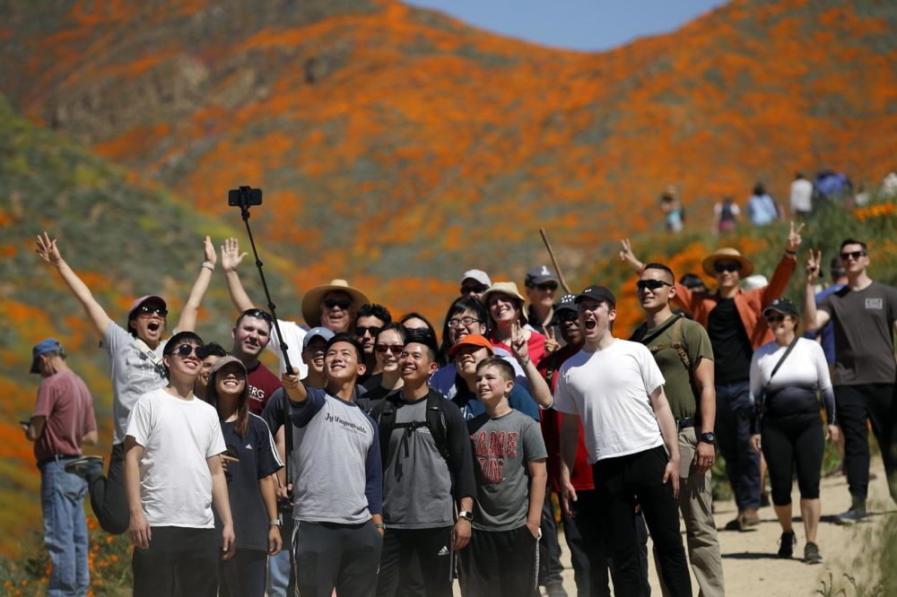 People pose for a picture among wildflowers in bloom Monday, March 18, 2019, in Lake Elsinore, Calif. (Gregory Bull/AP)