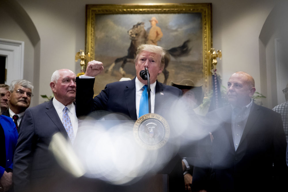 President Donald Trump, accompanied by Agriculture Secretary Sonny Perdue, left, gestures as he speaks about an infrastructure meeting with House Speaker Nancy Pelosi of Calif. and other Democratic leaders during a meeting to support America's farmers and ranchers in the Roosevelt Room of the White House, Thursday, May 23, 2019, in Washington. (Andrew Harnik/AP)