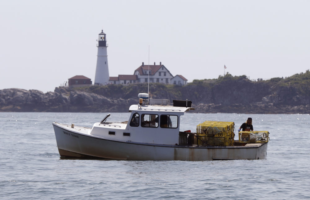 A lobsterman tends to his traps off Cape Elizabeth, Maine. The harvest of crustaceans in America's biggest lobstering state is usually in full swing by July, but fishermen say they aren't catching much.(Robert F. Bukaty/AP File Photo)
