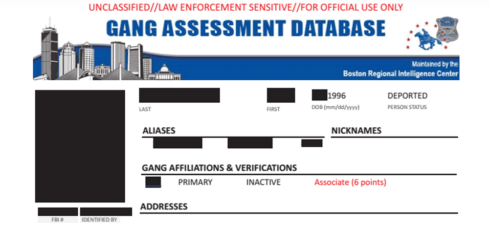 Boston police maintains a gang database tracking 5,300 individuals listed as actively, or previously, having been in a gang (Boston Police)