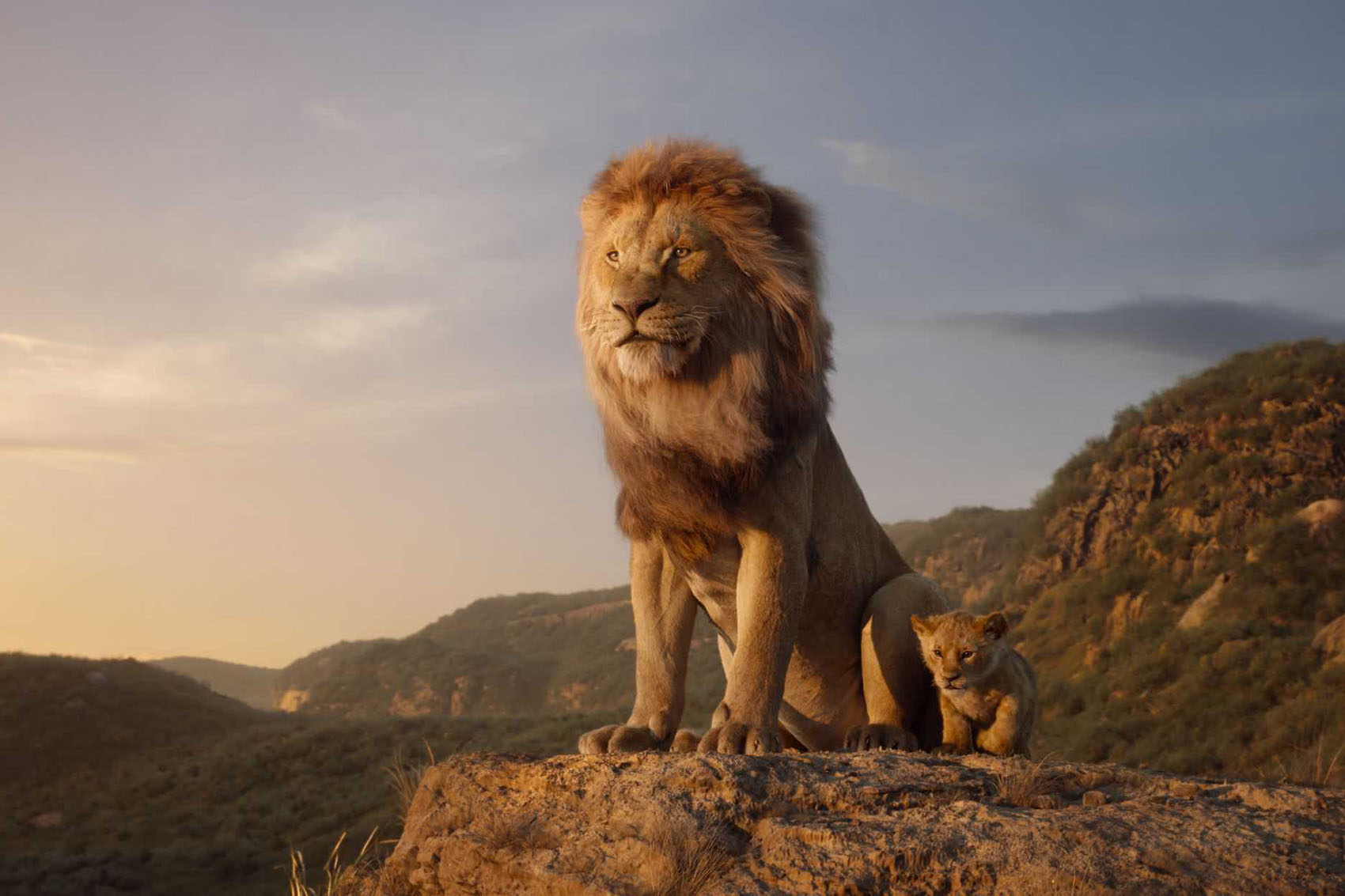 The Lion King Returns That S The Circle Of Life Here S Your Review On Point
