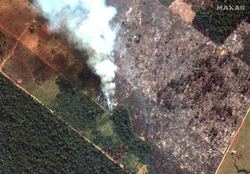 Why The Amazon Is Burning And How World Leaders Want To Stop It