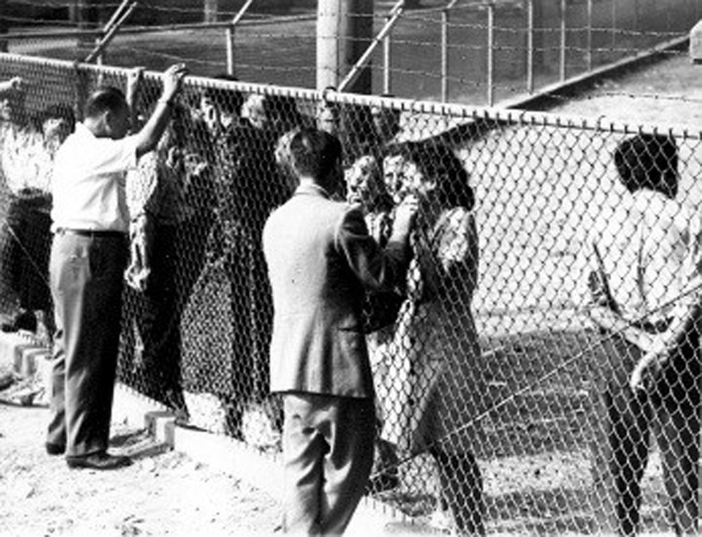 Oswego residents talking to the refugees at Fort Ontario. (Photo courtesy of Beit Hatfutsut Museum/Safe Haven Holocaust Refugee Shelter Museum)