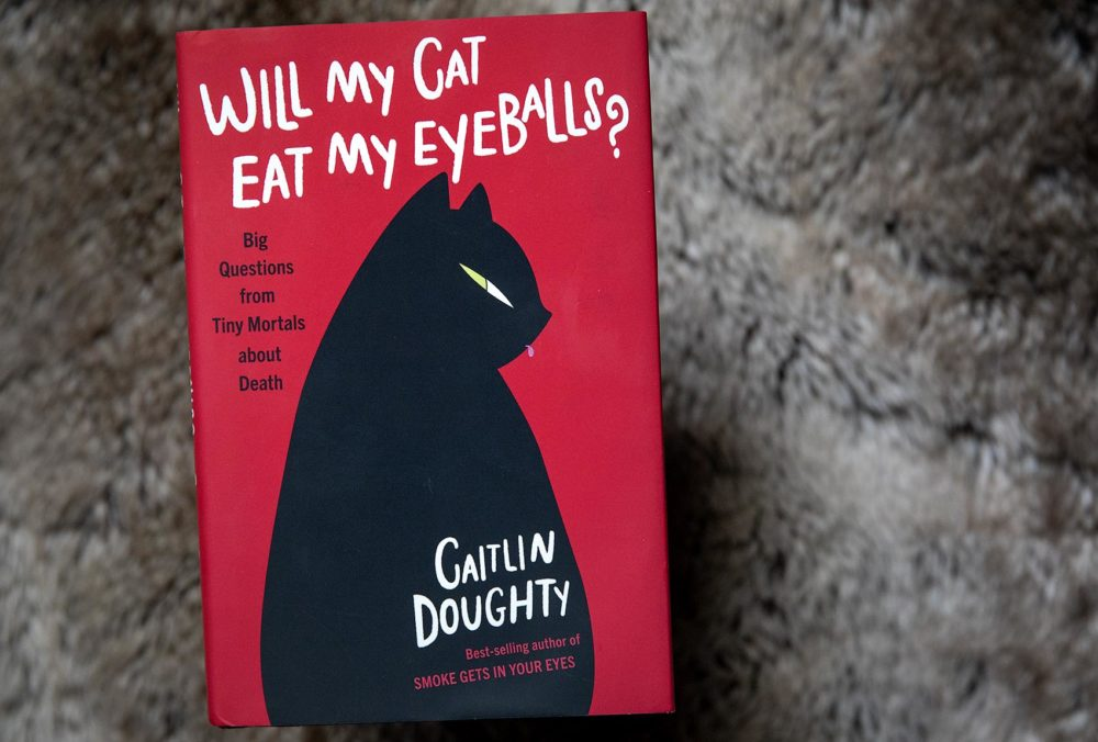 Will My Cat Eat My Eyeballs? Mortician Answers FAQs About