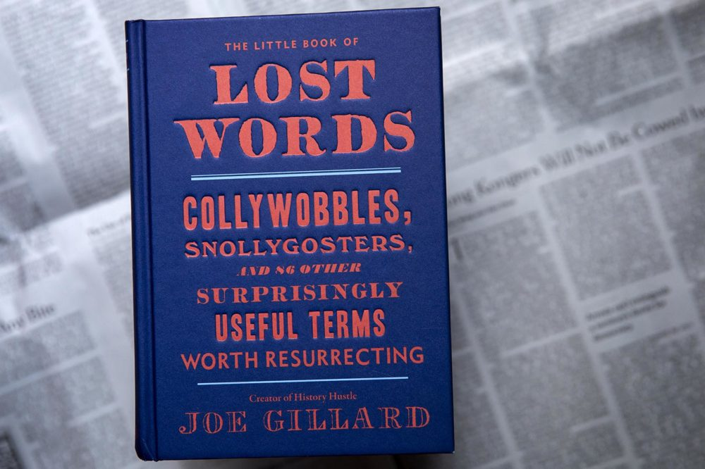"""The Little Book Of Lost Words"" by Joe Gillard. (Robin Lubbock/WBUR)"