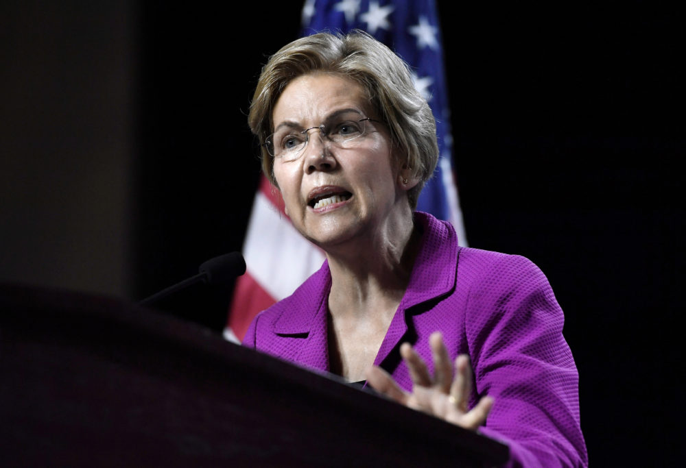 Democratic presidential candidate U.S. Sen. Elizabeth Warren speaks to delegates during the 2019 Massachusetts Democratic Party Convention Saturday in Springfield. (Jessica Hill/AP)