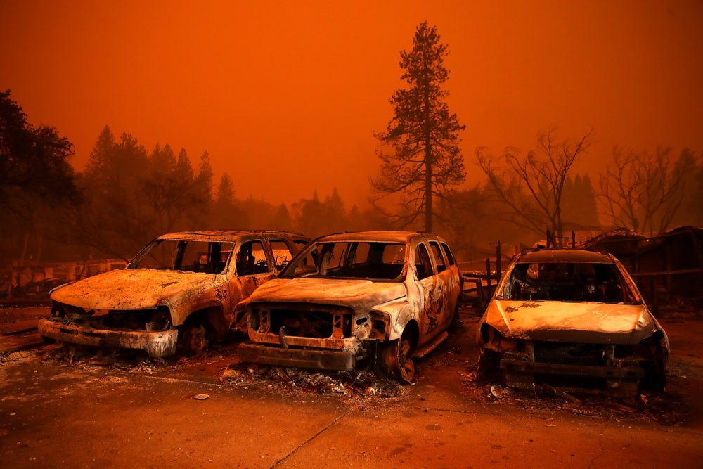 Cars destroyed by the Camp Fire sit in the lot at a used car dealership on November 9, 2018 in Paradise, California. (Photo by Justin Sullivan/Getty Images)