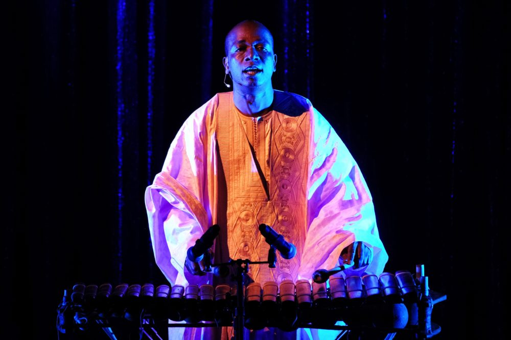 Balla Kouyaté plays at the National Heritage Fellowships Concert on Sept. 20 at the Shakespeare Theatre Company's Sidney Harman Hall in Washington D.C. (Courtesy Tom Pich and National Endowment for the Arts)