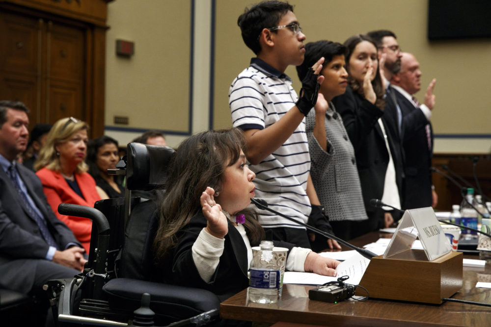 Witnesses including from left, Maria Isabel Bueso of Concord, Calif., Jonathan Sanchez, 16, of Boston, and others are sworn in at a House Oversight subcommittee hearing. (Jacquelyn Martin/AP)