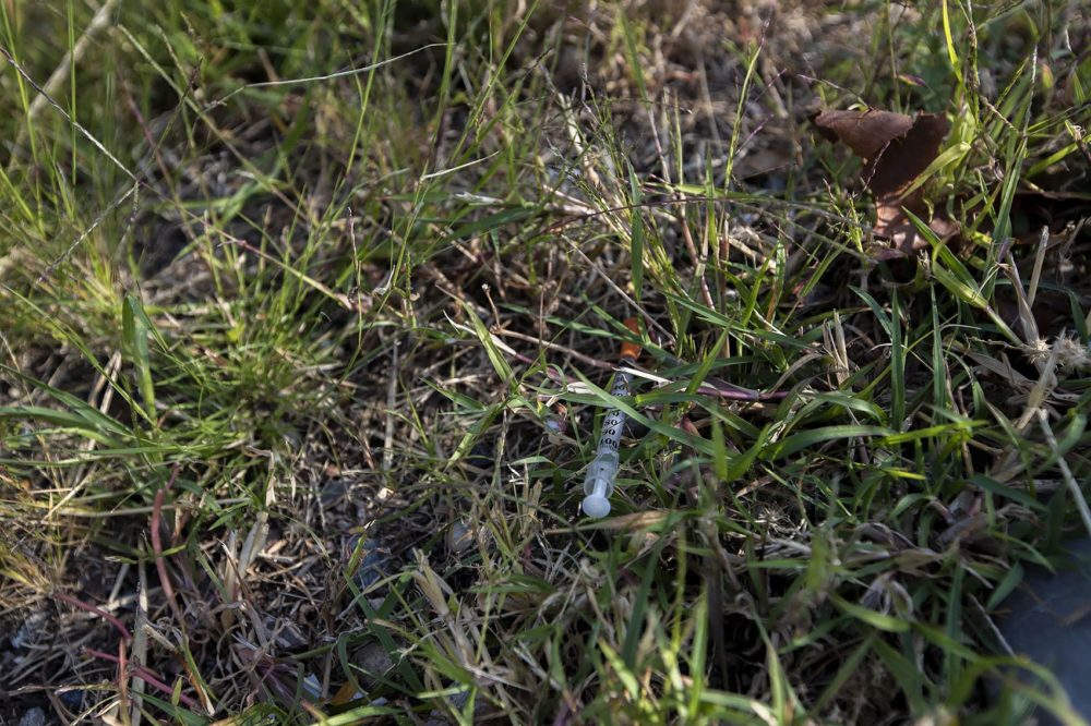 A used syringe is seen in the grass on the side of Bradston Street in Boston. (Jesse Costa/WBUR)
