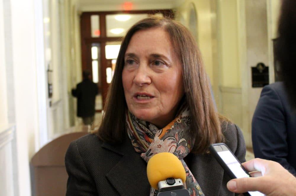 Treasurer Deborah Goldberg has decided against a congressional run. (Sam Doran/SHNS)