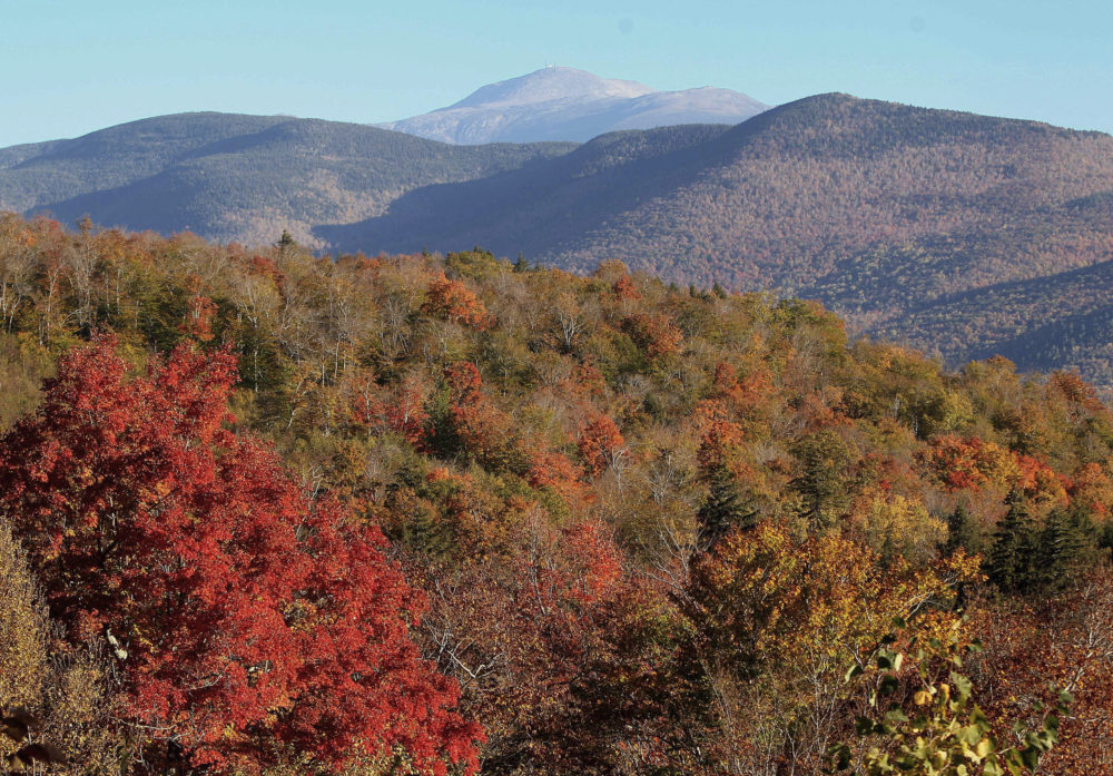 Leaves begin to change color along the Presidential Range in the White Mountain National Forest, visible from Hart's Location, N.H. (Jim Cole/AP)