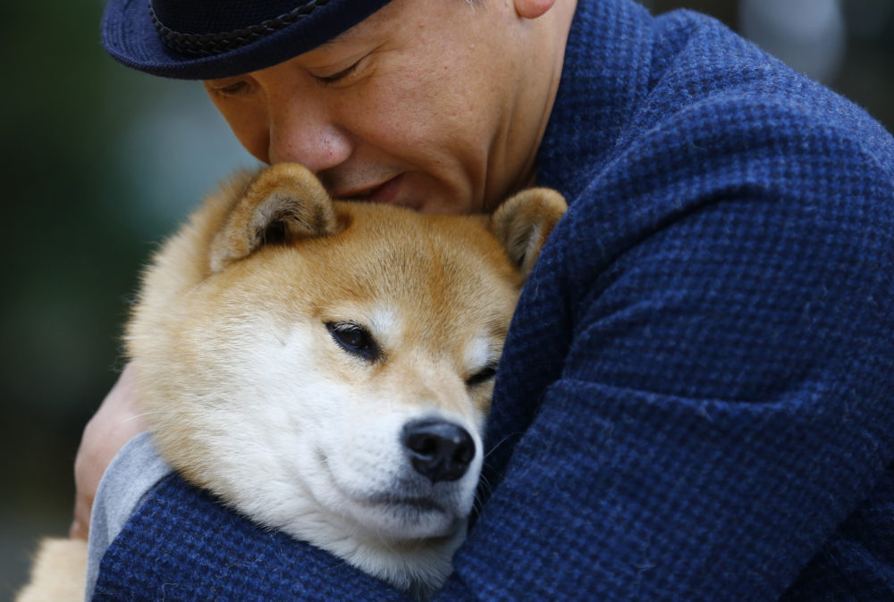 In this Wednesday, Dec. 23, 2015 photo, Shinjiro Ono hugs his Shiba Inu Maru at Ueno Park in Tokyo. New research suggests owning a dog can be beneficial to your health. (Shizuo Kambayashi/AP)