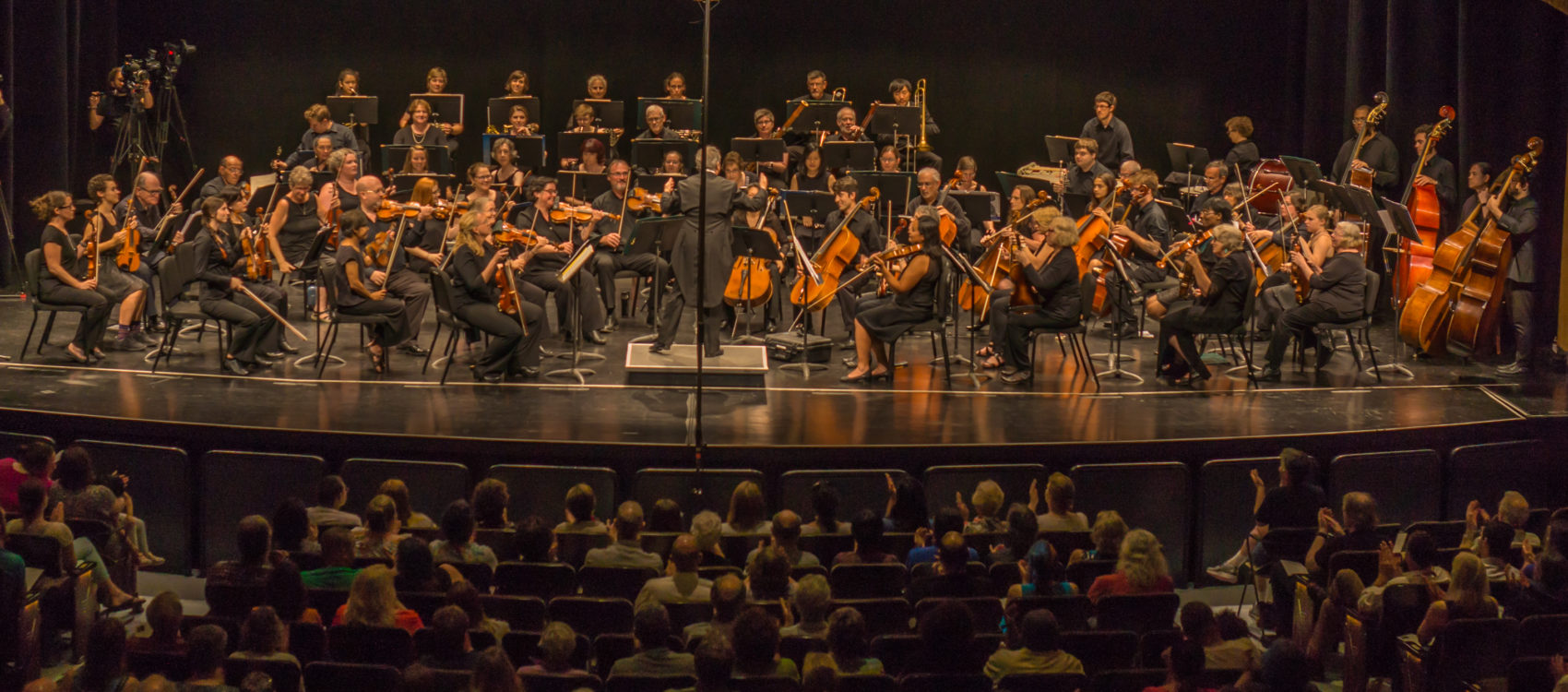 "The Me 2/ Orchestra performing at Burlington's Flynn Theater (Courtesy ""Orchestrating Change"")"