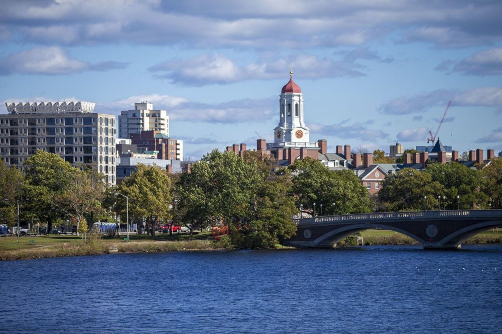 Harvard University as seen from across the Charles River. (Jesse Costa/WBUR)
