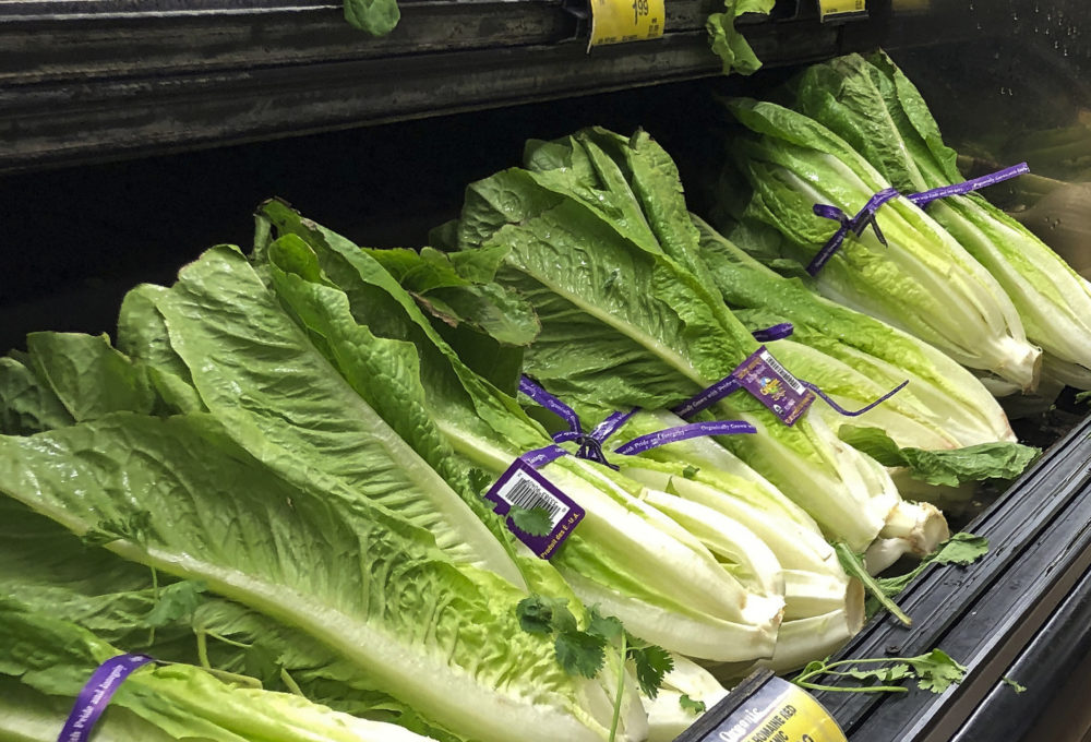 This Nov. 20, 2018 file photo shows romaine lettuce at a store in Simi Valley, Calif. On Friday, Nov. 1, 2019, the U.S. Food and Drug Administration says it learned of an E. coli outbreak in mid-September. (Mark J. Terrill/AP)