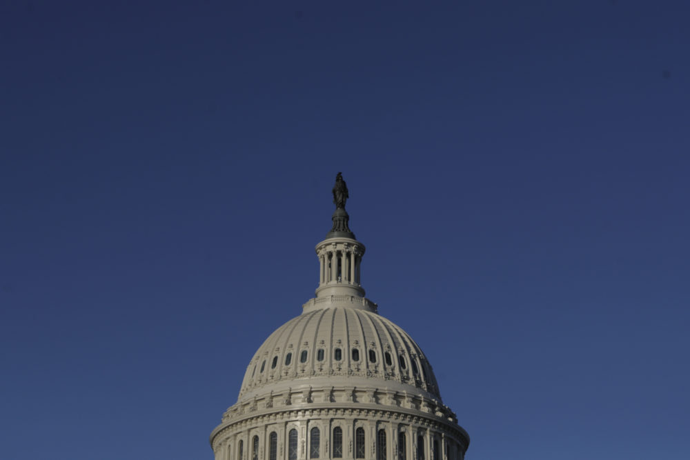 The dome of the U.S. Capitol (Julio Cortez/AP)