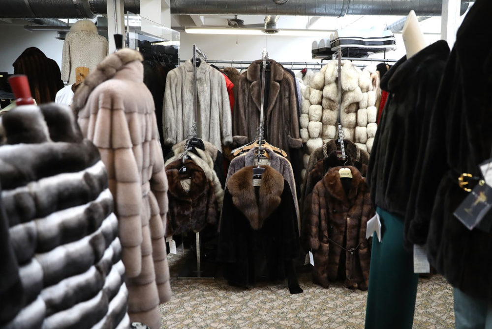 Used fur coats are displayed in San Francisco, California, before the city voted to ban the sale of fur. (Justin Sullivan/Getty Images)