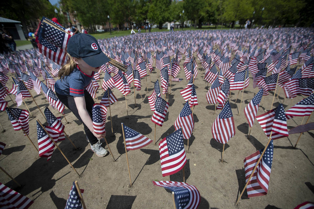 Six-year-old Raegan Wilcox plants an American flag into the ground during the annual Massachusetts Military Heroes Flag Planting at the Boston Common. (Jesse Costa/WBUR)