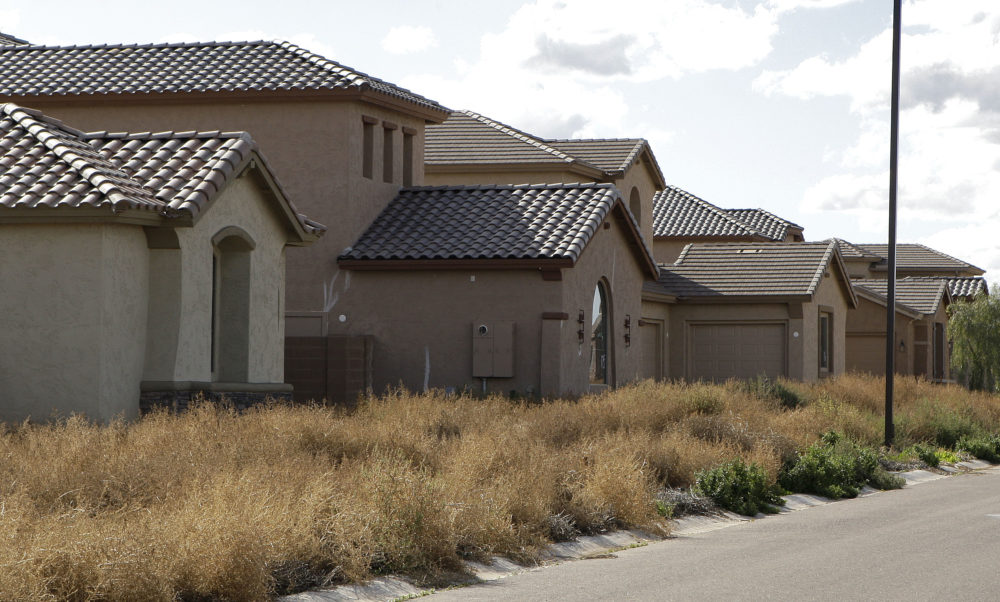 Weeds take over a row of vacant homes in Gilbert, Arizona. (Matt York/AP)