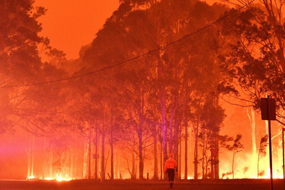 A firefighter walks past burning trees during a battle against bushfires in Australia. (Saeed Khan/AFP/Getty Images)