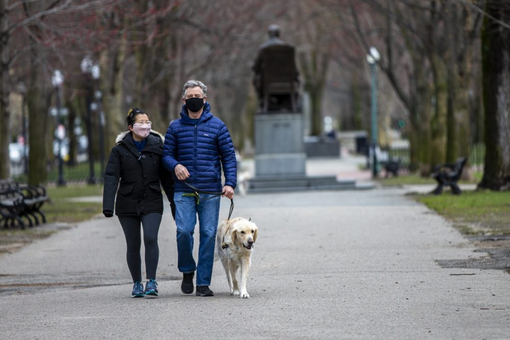 Shan Soe-Lin and Robert Hecht out for an afternoon stroll with Spud down the Commonwealth Avenue Mall. (Jesse Costa/WBUR)