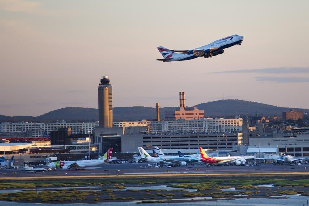 Logan International Airport. (Jesse Costa/WBUR)