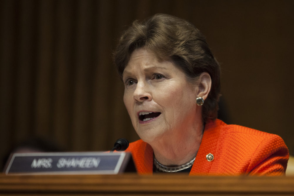 Sen. Jeanne Shaheen. (Zach Gibson/Getty Images)
