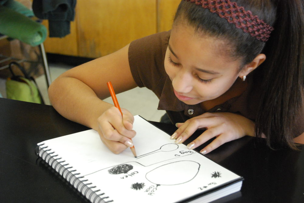 A student works on drawing as part of Deborah Putnoi's the Drawing Lab. (Courtesy Deborah Putnoi)