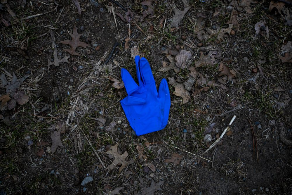 A discarded nitrile glove on the ground on the Fellsway in Medford. (Jesse Costa/WBUR)