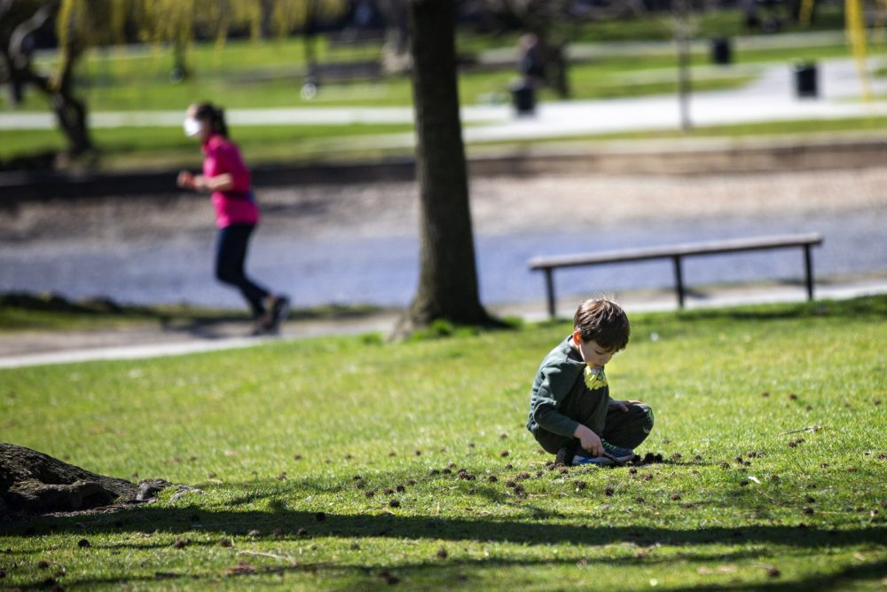 A young boy digs in the grass with stick in the Boston Public Garden in April. (Jesse Costa/WBUR)