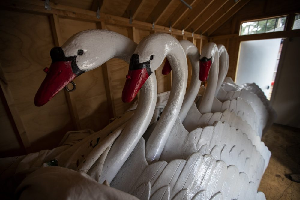 The swans that are normally mounted atop pontoons to float on the lagoon in the Public Garden in Boston will be kept in storage longer than expected this year. (Jesse Costa/WBUR)