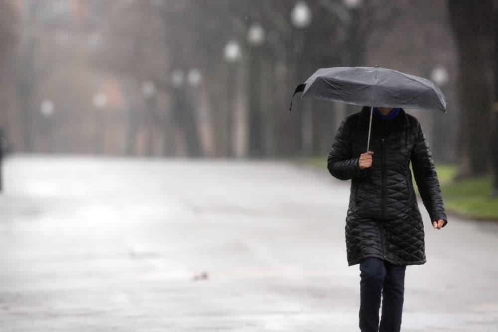 A lone woman walks in Boston Common, Friday, April 3, 2020, in Boston. (Michael Dwyer/AP)