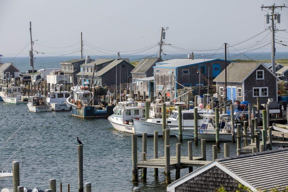 Boats docked at Dutcher.s Dock in Menemsha. (Jesse Costa/WBUR)