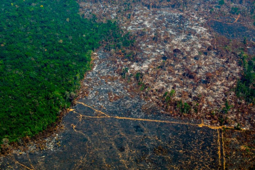 Aerial view of deforestation in Nascentes da Serra do Cachimbo Biological Reserve in Para state, Brazil, in the Amazon basin. (Joao Laet/AFP/Getty Images)