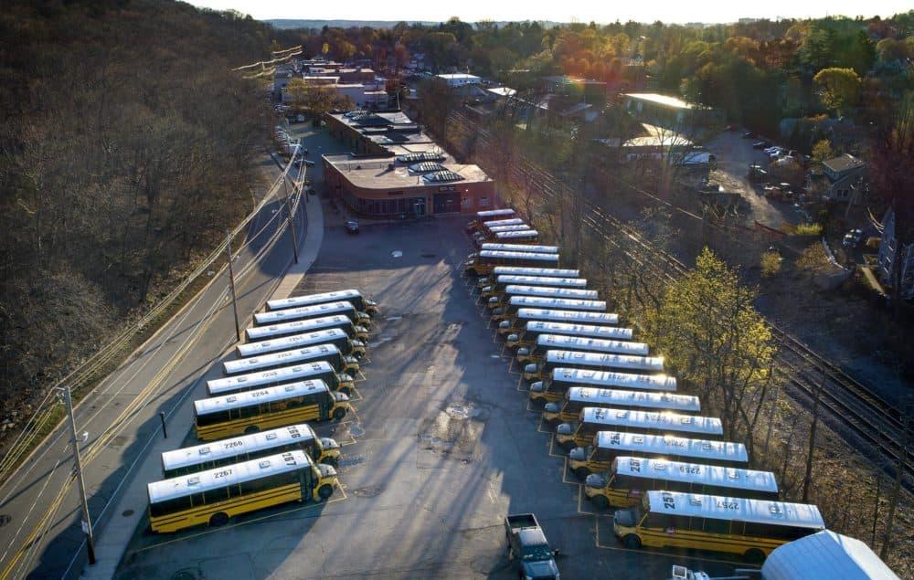 Rows of school buses parked on Pleasant Street in Belmont, Mass. (Robin Lubbock/WBUR)