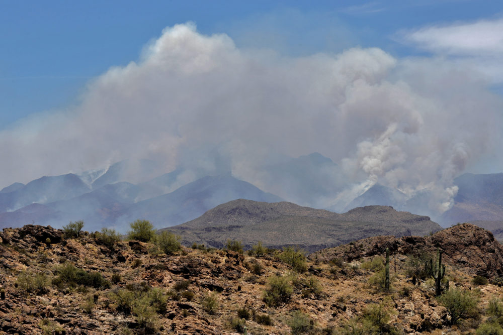 A portion of the Bush fire burns through the Tonto National Forest, Tuesday, June 16, 2020, as seen from Apache Junction, Arizona. (Matt York/AP)
