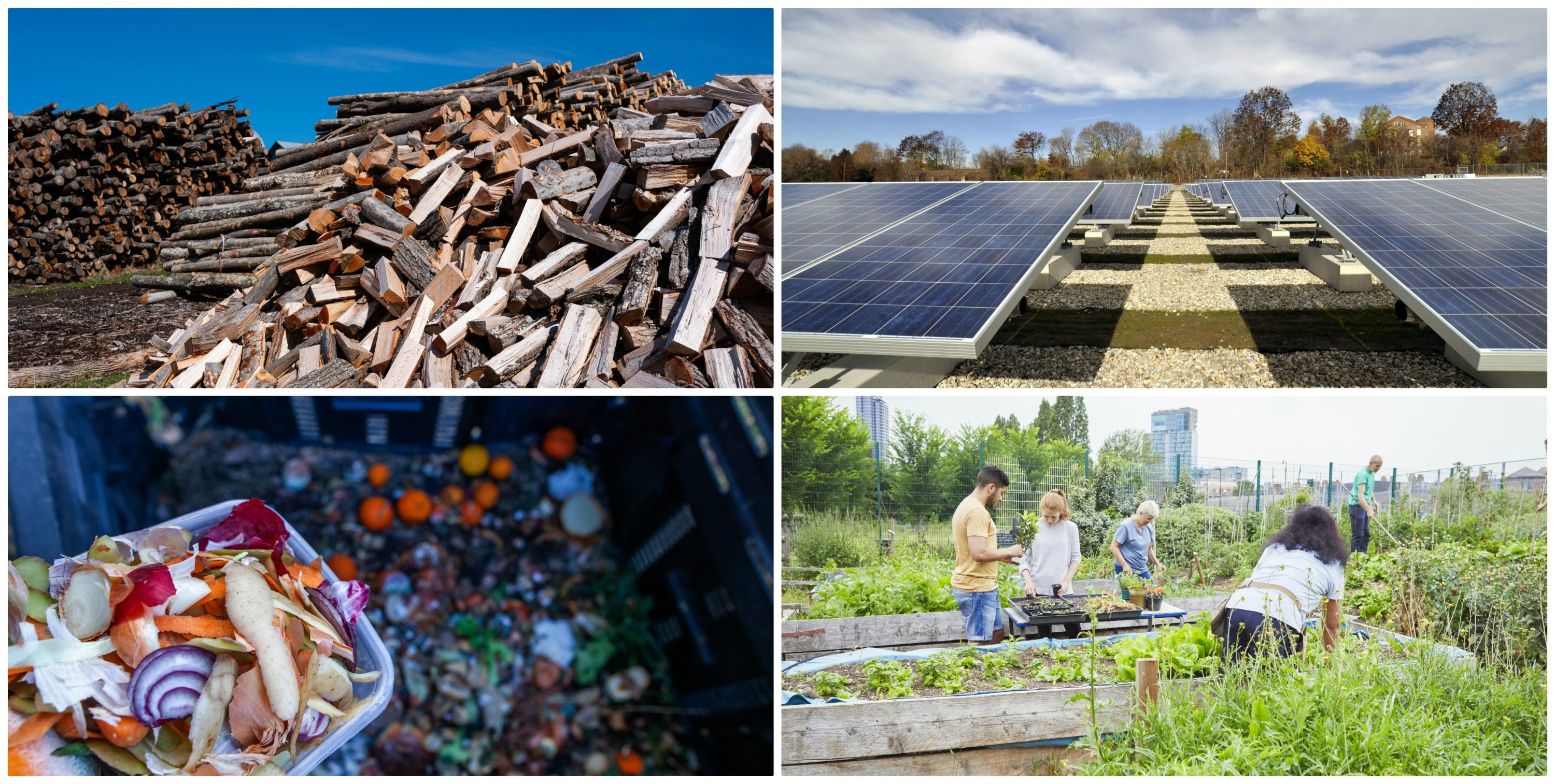 Clockwise from top left, hardwood logs in Charlotte, Vermont in 2020; solar panels in Pittsfield, Mass. in 2010; a group of volunteers work in a community garden; compostable food (AP Images; Getty Images; and Compassionate Eye Foundation/Natasha Alipour Faridani via Getty Images)
