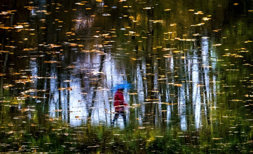 A woman is reflected in a puddle as she walks past a pond during rainy weather in a forest near the village of Meshcherskoye outside Moscow on October 15, 2017. / (Yuri Kadobnova/ AFP via Getty Images)