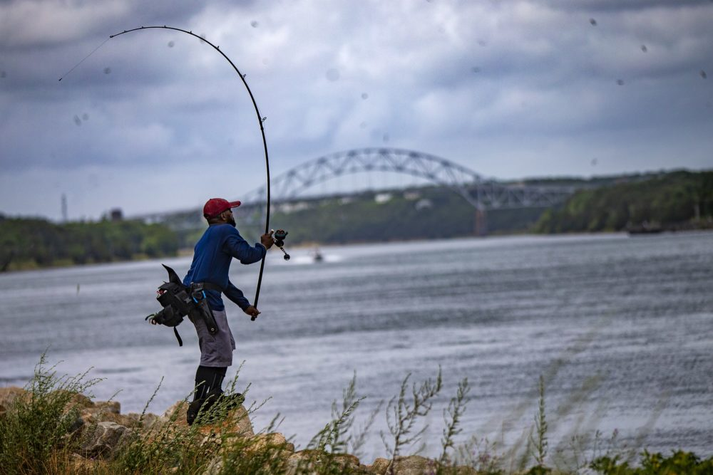 A fisherman casts his fishing line out into the Cape Cod Canal in Sandwich. (Jesse Costa/WBUR)