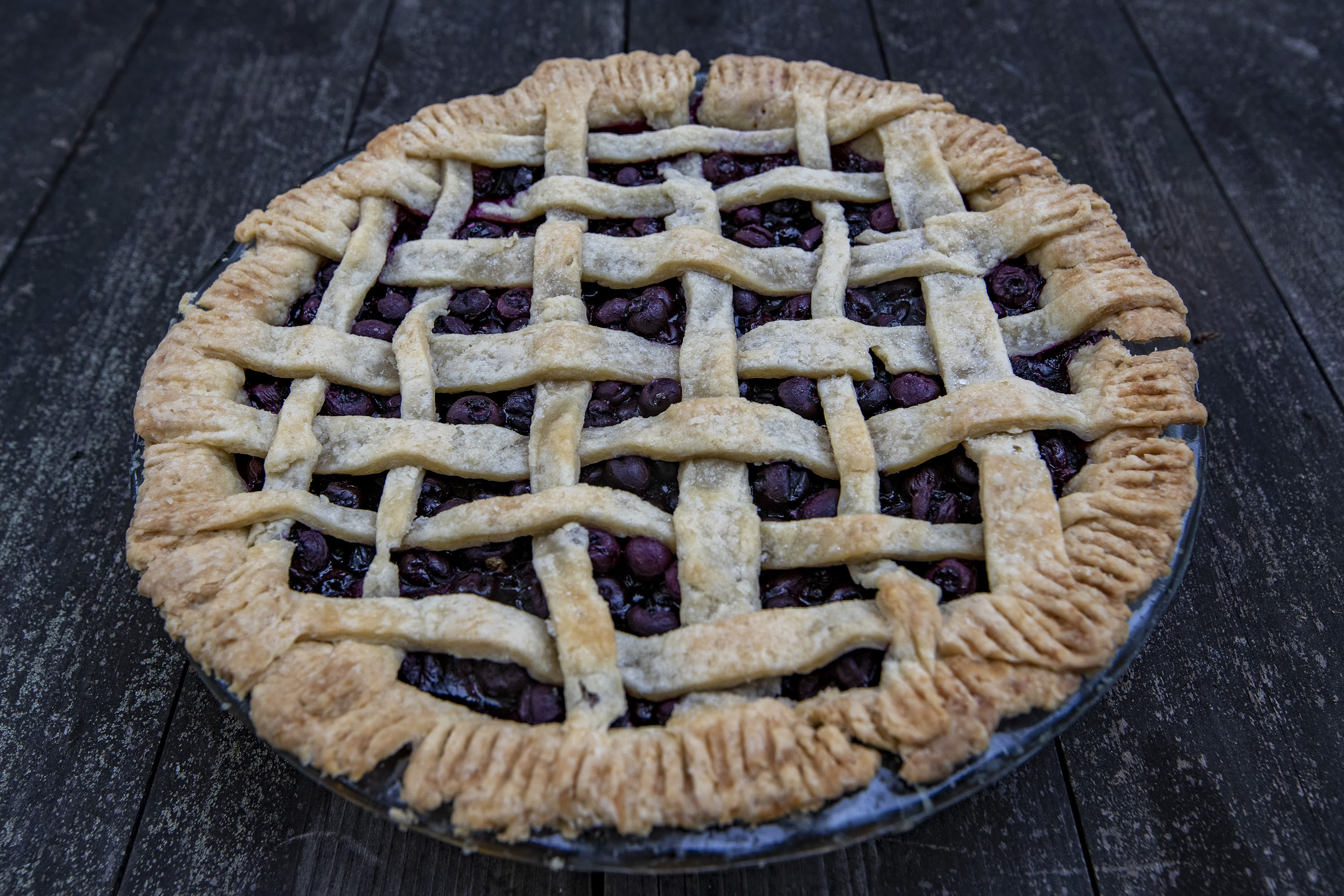 A blueberry pie made with blueberries from Honey Pot Hill Orchards in Stow. (Jesse Costa/WBUR)