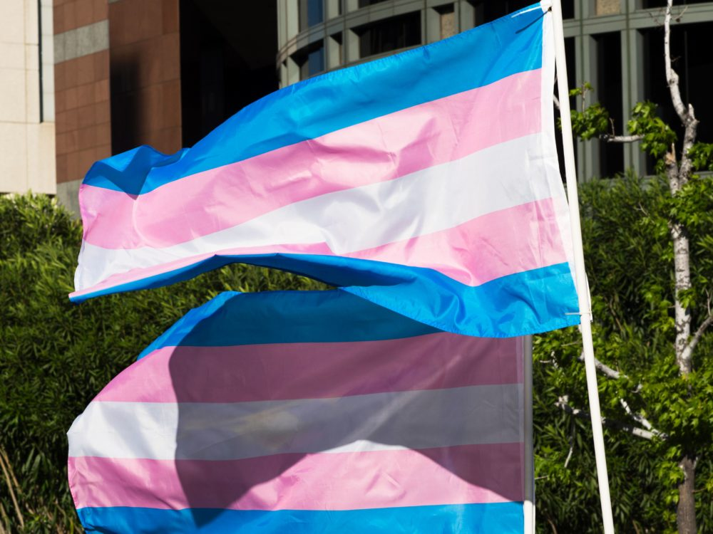 Trans pride flags flutter in the wind at a gathering to celebrate  International Transgender Day of Visibility. (Robyn Beck/AFP via Getty Images)